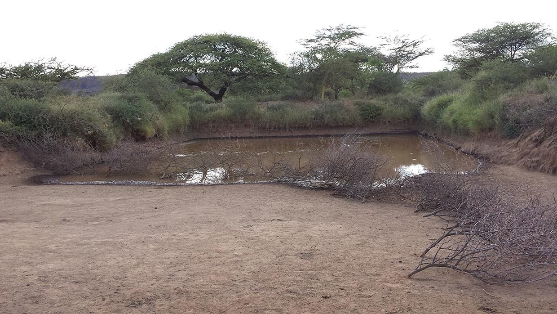 Ewuaso Rain Catchment Basin (Kenya)